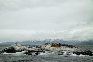 argentina-tierra-del-fuego-beagle-channel