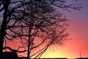 dawn-brussels