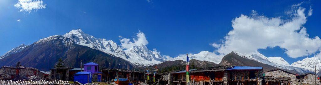 View in Shygalla