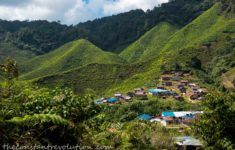 Cameron Highlands' Jungle Trails