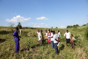 Kampala to Hoima: Volunteering with Eco-Agric Uganda