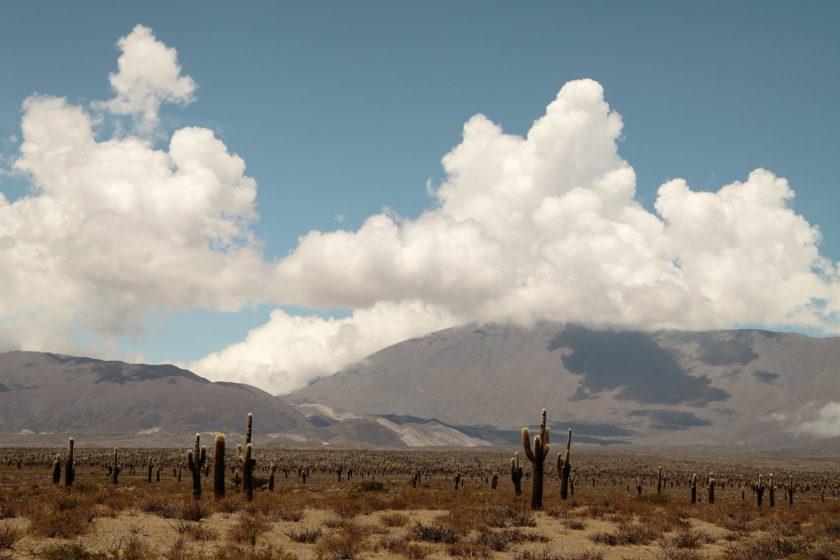 argentina-north-west-routa_40