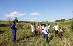 Kampala to Hoima: Volunteering with Eco-Agric Uganda
